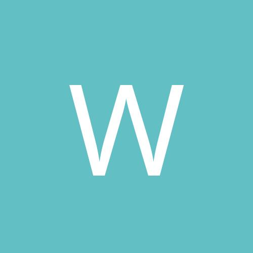 [WTR] Baiatul bun